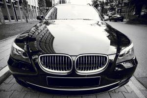 papay insurance-auto insurance
