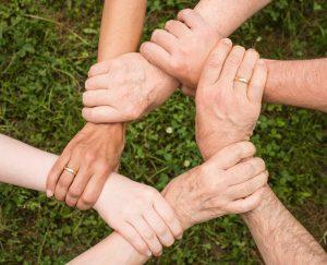 papay insurance- group benefits